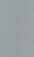 3921.77RL ИМПОСТ 70-Я СЕРИЯ КВАРЦЕВЫЙ СЕРЫЙ (LG) (АТ)